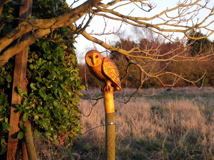 Chainsaw Carving Gallery | Sculpture of owl perched on a post under tree