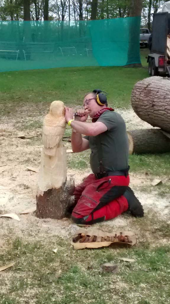 Wooden Sculture Galleries | Shaun Gilbert using a chisel technique at the Game & Country Fair in Norwich, Norfolk