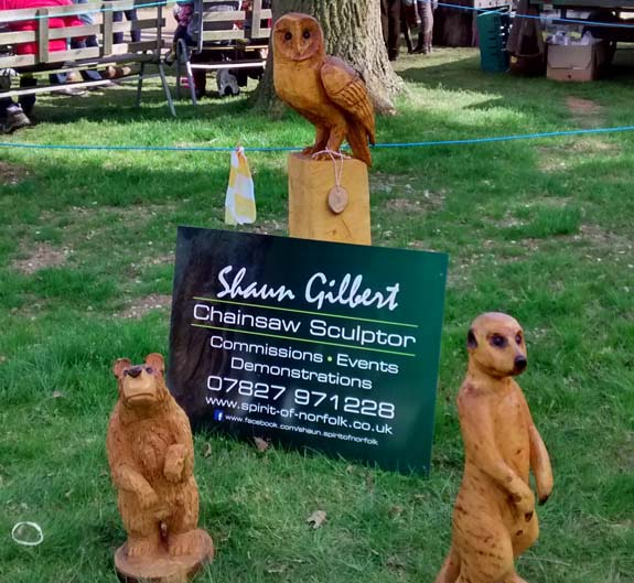 Chainsaw Carving Gallery | Meercat, Bear, Owl Sculptures