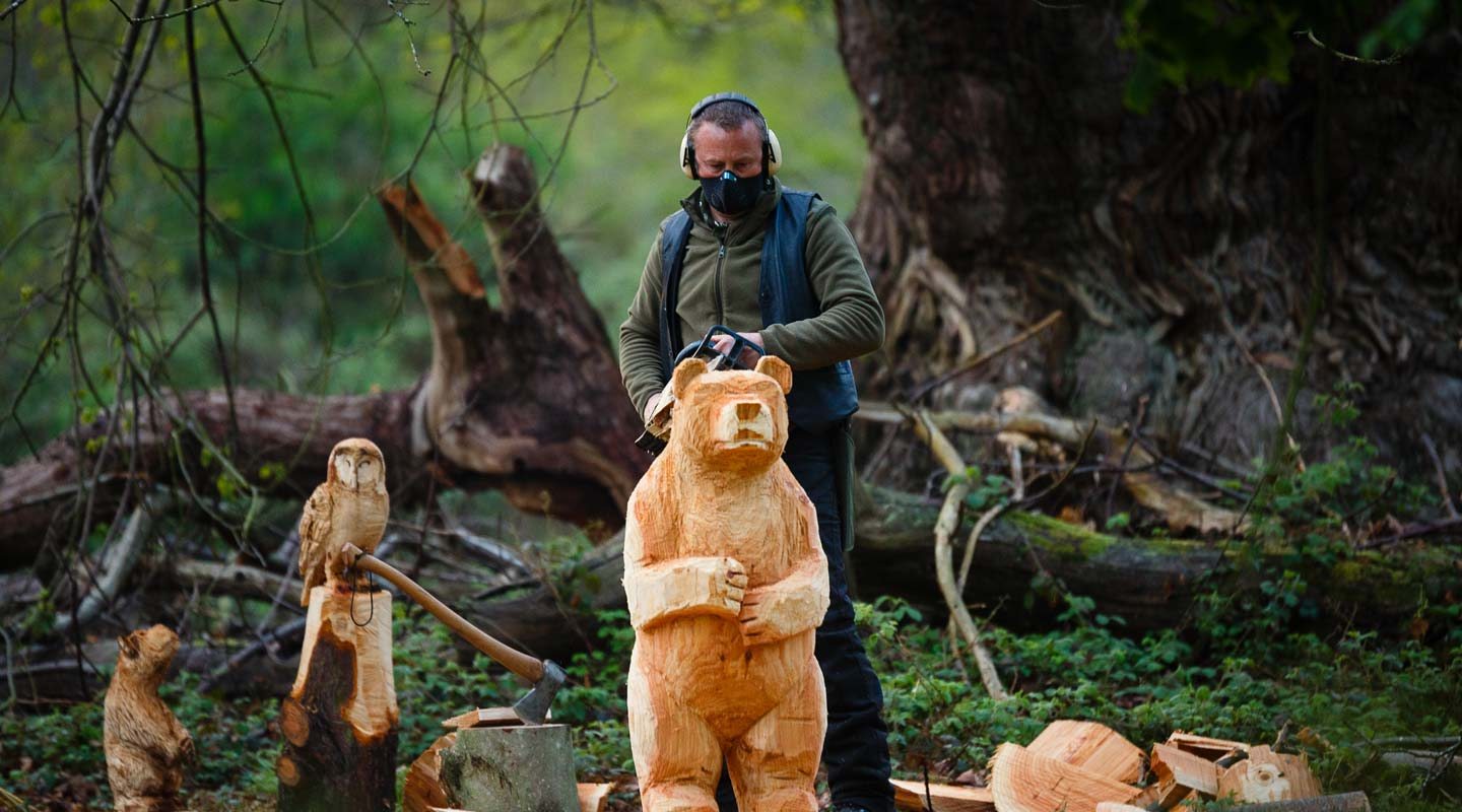 In the woods near Norwich carving a bear with a chainsaw